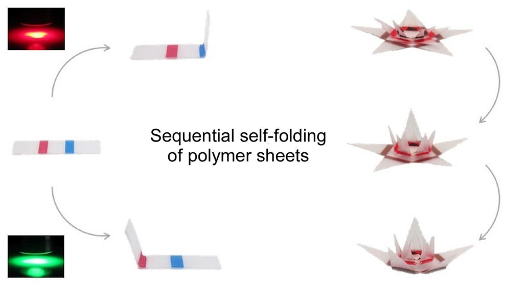 Self-folding of a 3-D plastic sheet