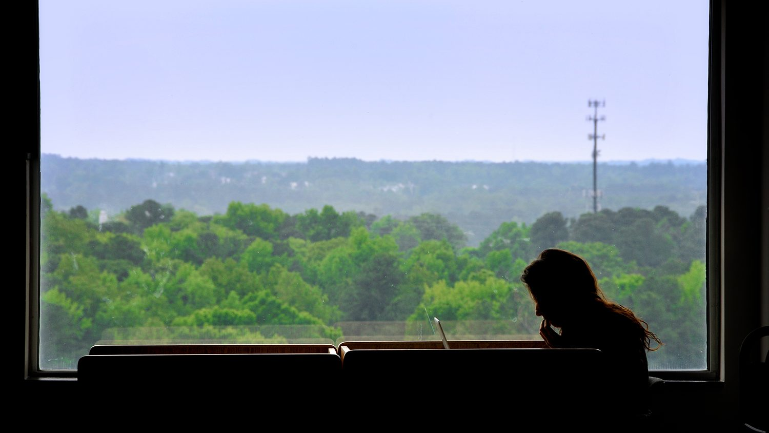 Student studies beside a window looking south out of DH Hill Library.