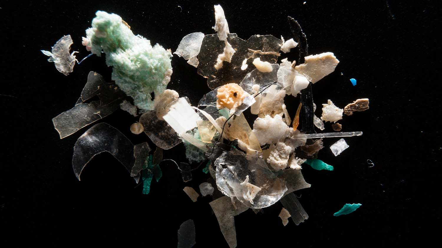 A clump of microplastic ocean waste